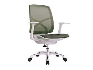 כסא דגם גריי לבן